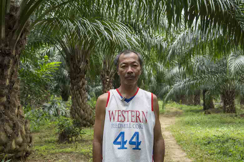 Graciano Muniz stands in a palm oil plantation planted on his land in Aramaywan community, Quezon municipality, Palawan. Photo by Rod Harbinson.