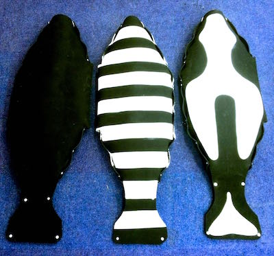 Decoys used to test a design for shark-deterring wetsuits and surfboards patterned to resemble the belly of an orca, like the decoy on the right. Sharks are thought to avoid orcas, which can kill and eat them. Photo by Phil Richardson.