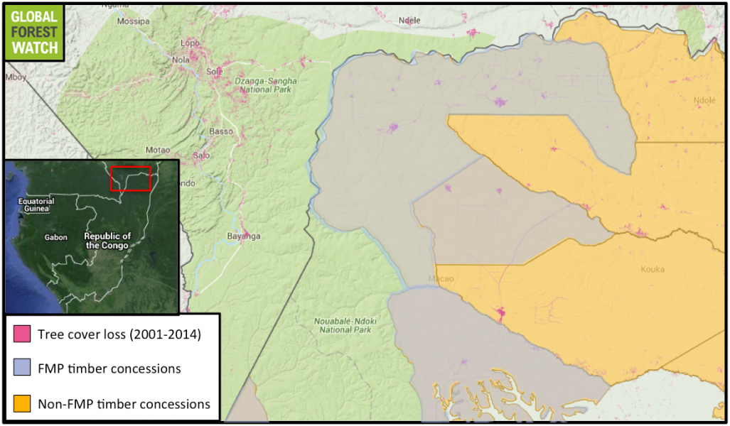 Congo's timber concessions operated under Forestry Management Plans (FMPs) are all located in the northern portion of the country. The authors of a recent study found that these concessions had a higher rate of deforestation after implementation of FMPs in the mid-2000s. Indeed, Global Forest Watch data indicate the FMP concessions shown here increased their average annual rate of forest loss more than 8 percent from 2001-2005 to 2006-2014. However, other researchers question the findings, saying sustainable forest management is nuanced and that these FMP concessions were actually more efficient at producing timber than concessions without.