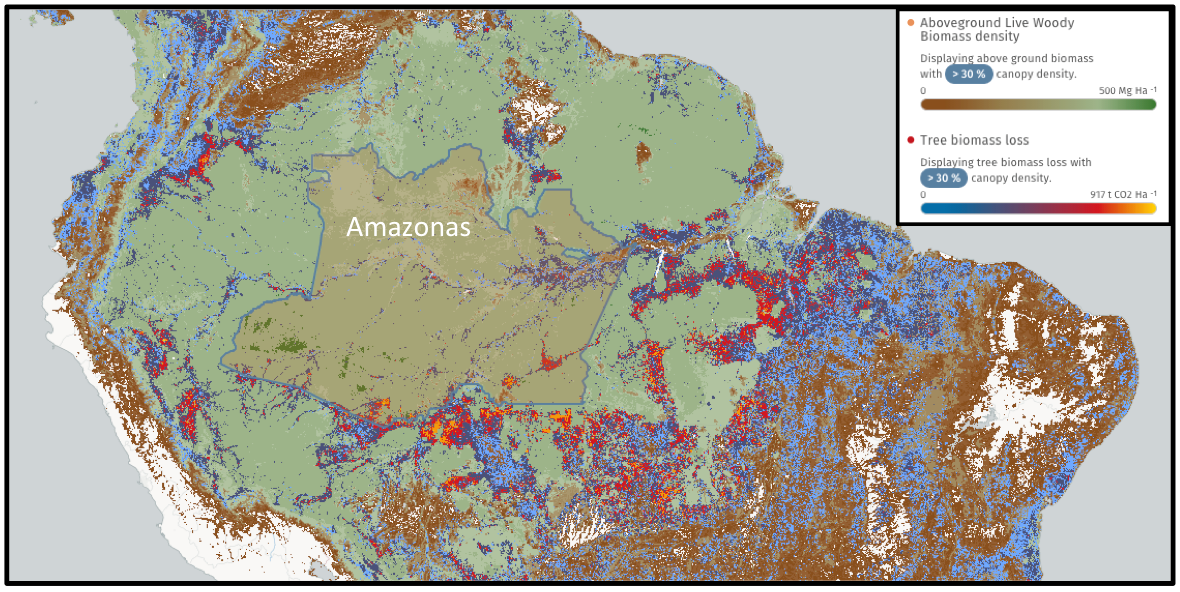 The world's tropical forests store around 30 percent of the world's terrestrial carbon. Brazil's forests alone held more than 64 million metric tons of carbon in 2000, according to data from Global Forest Watch Climate. However, land use changes such as conversion of forest to cropland and pasture are releasing that stored carbon into the atmosphere, further exacerbating global warming. Even the state of Amazonas, which holds a large share of Brazil's Amazon rainforest and is relatively unscathed compared to more southerly states, is trending upwards in terms of carbon emissions. Between 2001 and 2014 the state released 660 metric tons of carbon due to deforestation activities.