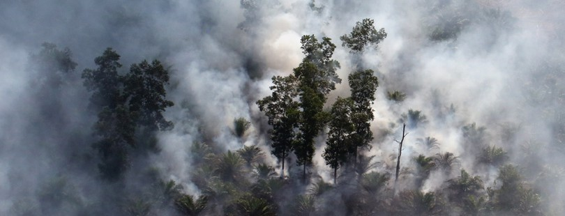 Indonesia seeks re-do on court decision absolving company for haze-causing fire