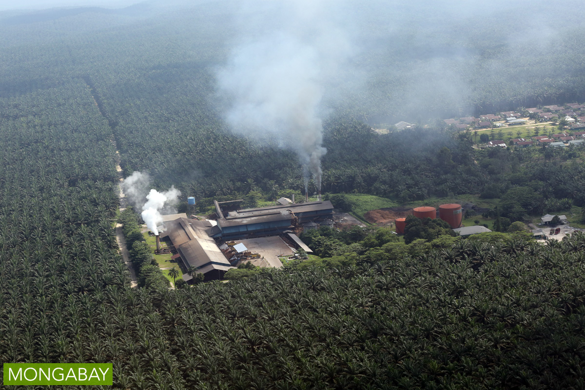 A palm oil mill in Indonesia. Photo by Rhett A. Butler/Mongabay