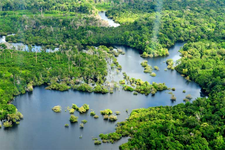 Freshwater ecosystems cover 1 million square kilometers of the Amazon basin. The movement of water — and the matter, nutrients and organisms it carries — between the headwaters and the ocean, the rivers and the forest, and the earth and the atmosphere is vital for ecosystem function; the 'hydrological connectivity' that allows this movement is under threat. Photo © NeiI Palmer/CIAT for CIFOR on Flickr under a Creative Commons Attribution-NonCommercial-NoDerivs 2.0 Generic license