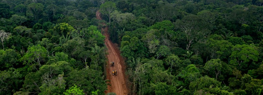 Oil extraction threatens to expand further into Ecuadorean rainforest under new 20-year contract
