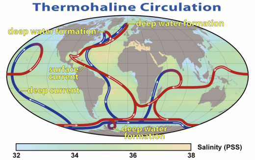 1024px-Thermohaline_Circulation_2
