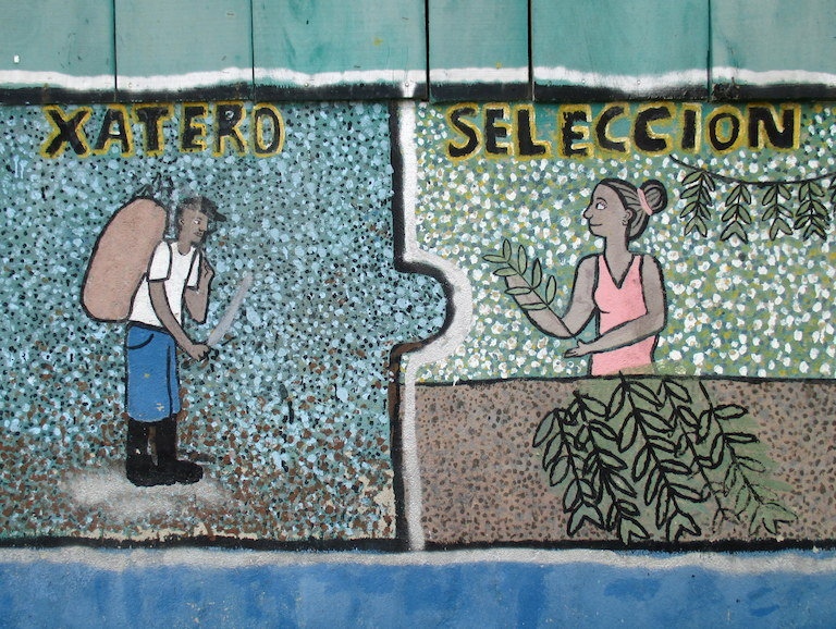 A detail in a mural painted by local students on the xate warehouse in Uaxactún depicts a xate harvester (xatero) and the sorting process (selección). Photo by Sandra Cuffe.