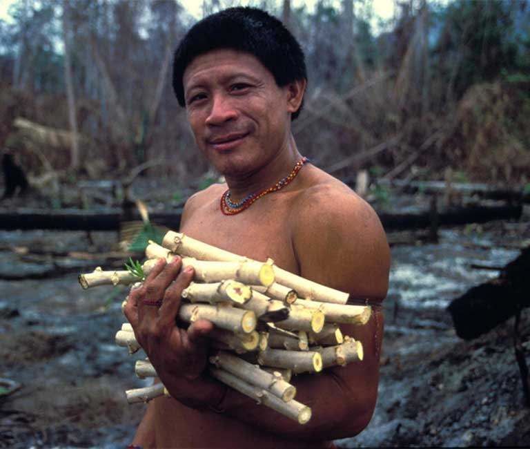"The Arara were a peaceful nomadic people who wandered so freely they did not have a word in their language for ""village."" Photo © John Miles / Survival International (http://www.survivalinternational.org)"