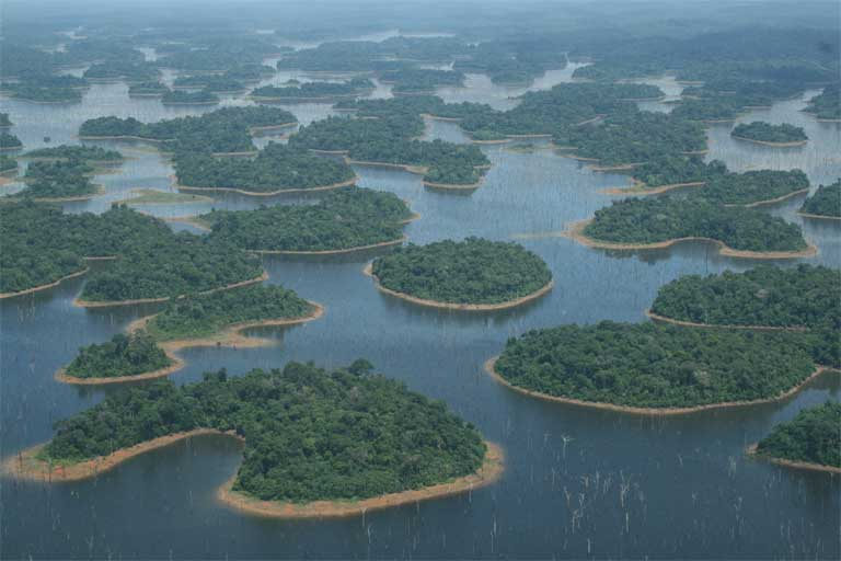 Islands in the Reserva Biológica do Uatumã, formed by flooding associated with the Balbina dam in the Amazon. Habitat loss and fragmentation, along with greenhouse gas emissions due to submerged vegetation and soil, are just two impacts that tropical dams have on the environment. A new study warns that the combined and interrelated impacts of hundreds of dams in the Amazon put the region's biodiversity at risk. © Carlos Peres