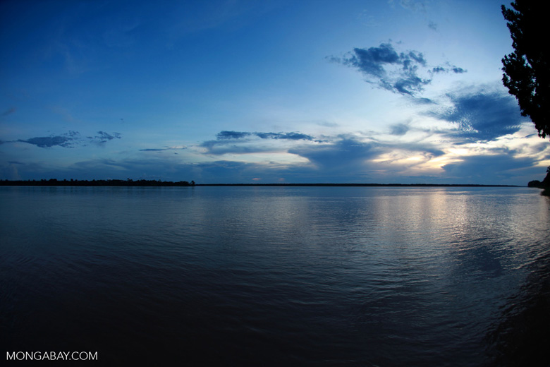 Sunset over the Amazon River. A good understanding of the giant catfish's movements across six Amazonian countries is required to ensure that conservation and fisheries management policies are appropriate and effective. Photo by Rhett A. Butler/Mongabay