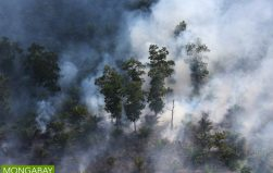 Indonesian military plans anti-haze operation in Sumatra