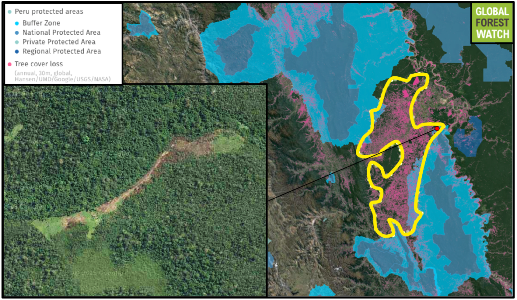 Deforestation is also edging into protected areas. The inset shows an area where around 20 hectares of forest loss occurred from 2008 - 2013 inside El Sira Communal Reserve. This specific area is also within the only known range of the frog species listed above. Data from Hansen/UMD/Google/USGS/NASA, accessed through Global Forest Watch.