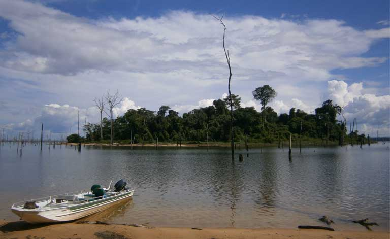 An island formed by flooding associated with the Balbina dam in the Amazon. Because island biodiversity inevitably declines, islands should be included in calculations of habitat lost to hydropower development, the researchers argue. Photo by Isabel Jones