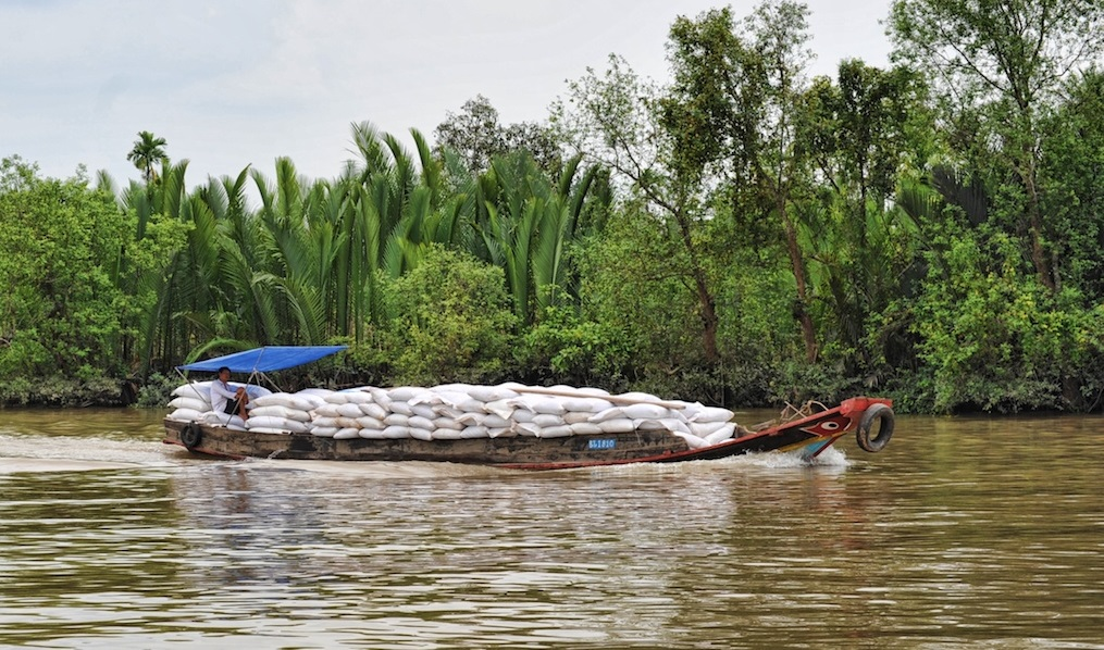 A plan to save the Mekong Delta