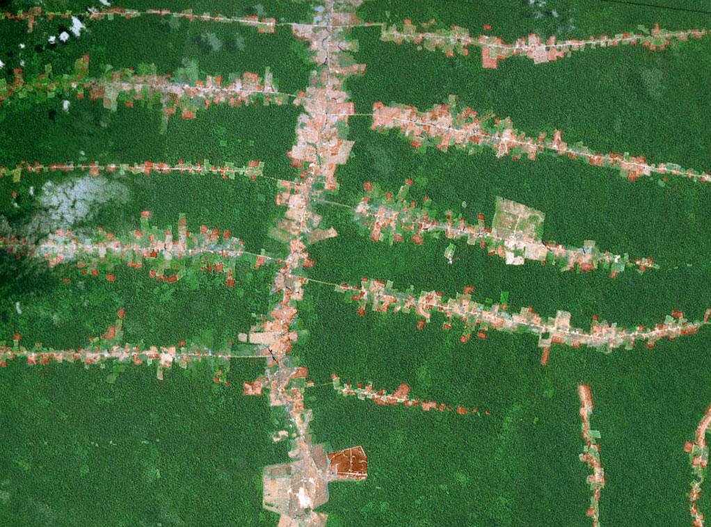 Forest fragmentation in the Brazilian Amazon. Photo courtesy of NASA