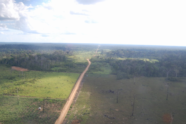 When new roads penetrate the rainforest, loggers, ranchers and soy growers often soon follow. Photo courtesy of the Brazilian Forest Service