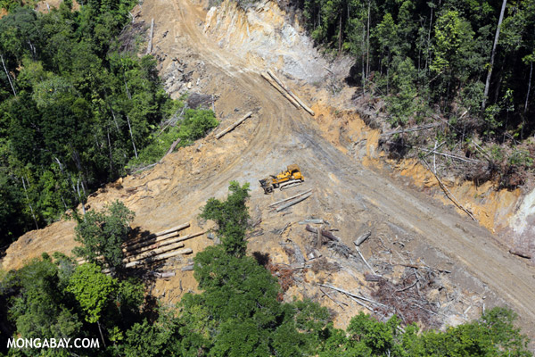A bulldozer at a logging site in Malaysian Borneo. Logging and major infrastructure projects often go hand-in-hand. Photo by Rhett A. Butler / Mongabay