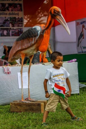 A child stands proudly beneath a Greater Adjutant statue on India's Independence Day. Photo courtesy of Aaranyak