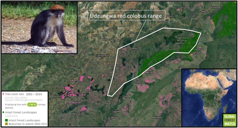 0118-colobus-range-loss-map2