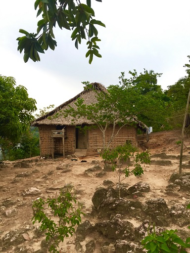 "A typical ribeirnho house constructed from mud, sticks and dried palm fronds, known as ""pao a pique."" Photo by Maximo Anderson for Mongabay"