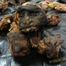 """Endangered species to declare?"" Europe's understudied bushmeat trade"