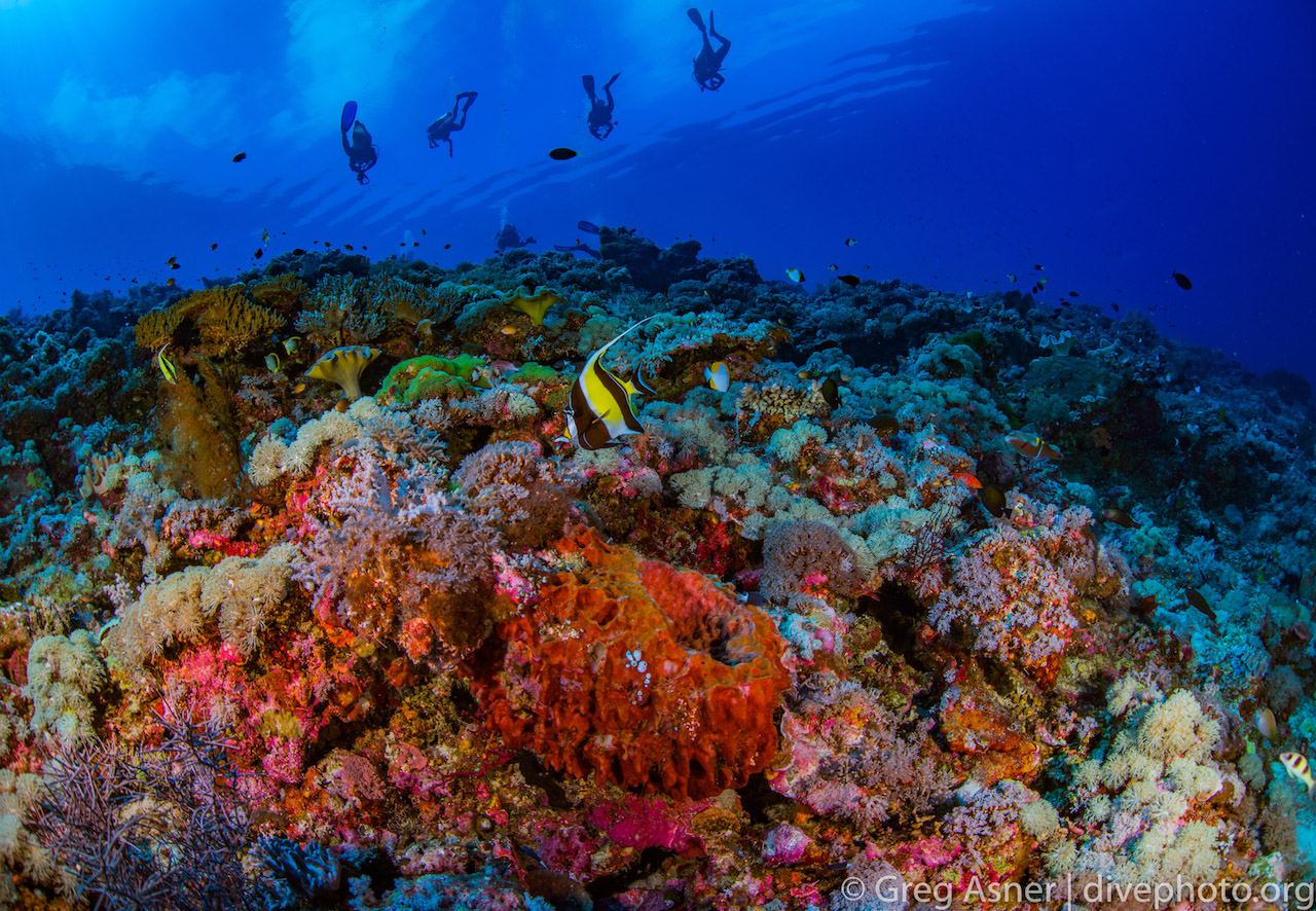 greg_asner_spratly_islands_4823