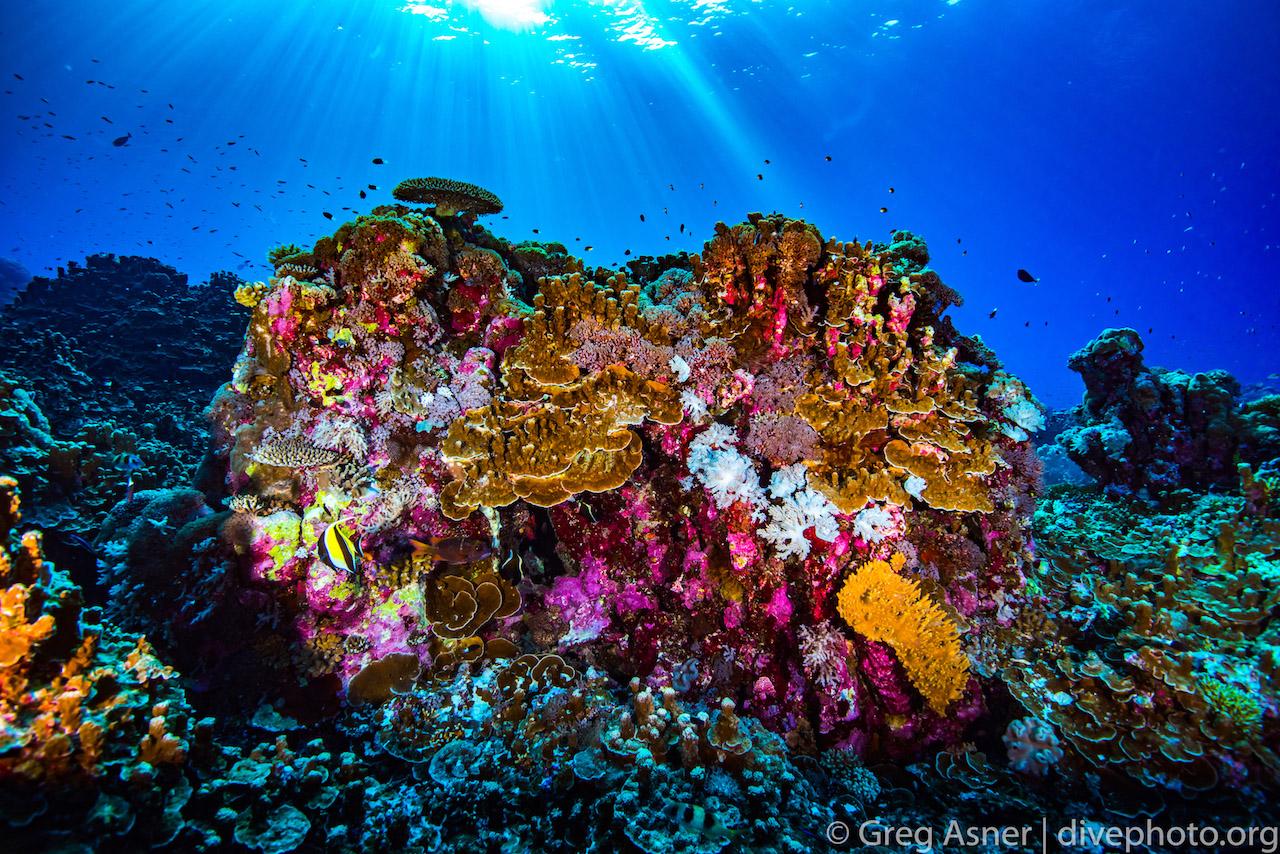 greg_asner_spratly_islands_5693
