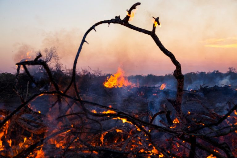 Logs burn at sunset in Bolivia. Photo by Jim Wickens/Ecostorm