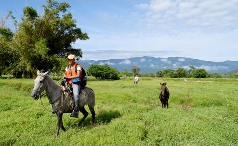 Forest protectors from an Afro-Colombian community set out on patrol on horseback in the far northwest of Colombia. Photo by Bart Crezee.